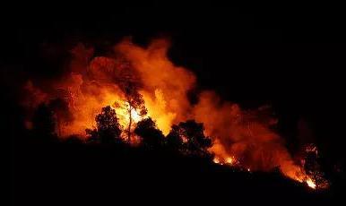 湘潭一村民丢烟头引发森林火灾 被行政拘留