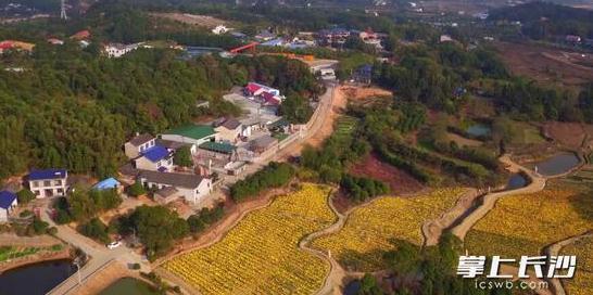 从指尖、眼帘到心窝 ——中国湘绣之乡沙坪的美丽路径