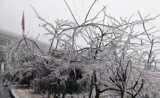 2020年湖南第一场雪昨晚降在常德石门