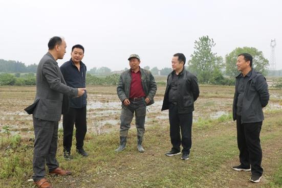 临澧县市场监管局全力推进 联村耕地抛荒整治工作,复垦率100%